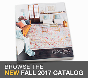 Fall 2017 Catalog