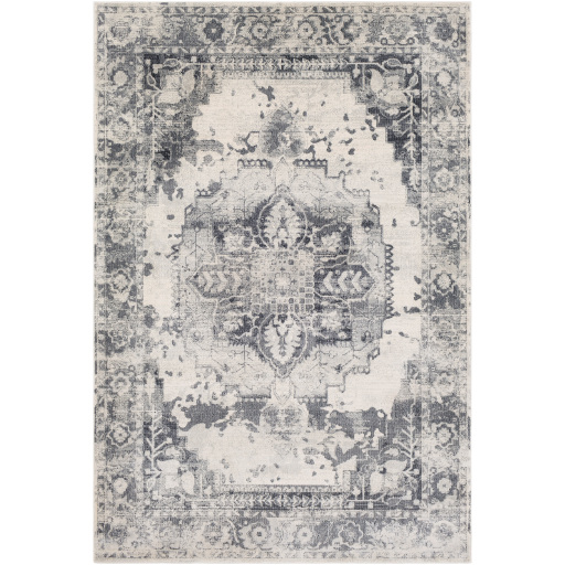 Surya Aura Silk ASK-2326 Area Rug