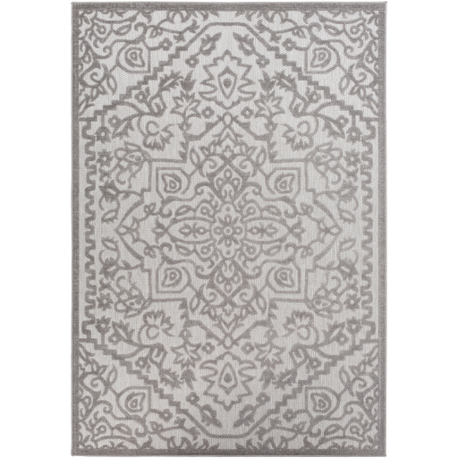 Surya Big Sur BSR-2302 Area Rug