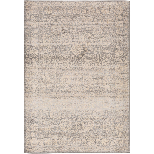 Surya City Light CYL-2300 Area Rug