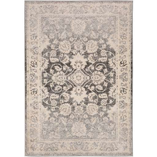 Surya City Light CYL-2308 Area Rug