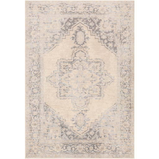 Surya City Light CYL-2316 Area Rug